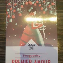 Premier Amour, zoals gemeld door The Albus Design Hotel Amsterdam Centrum met iLost