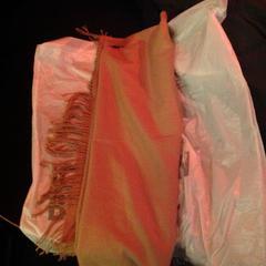 Beige sjaal, zoals gemeld door De Heeren van Aemstel met iLost