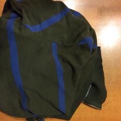 Vest, zoals gemeld door Pathé Groningen met iLost