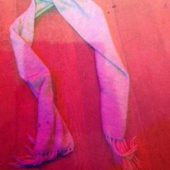 Grijze sjaal, zoals gemeld door De Heeren van Aemstel met iLost