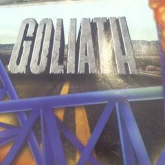 Foto Goliath, gemeldet von Walibi Holland über iLost