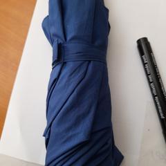 Paraplu, as reported by Arriva Achterhoek-Rivierenland using iLost