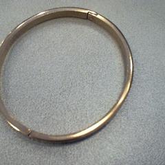 Armband, zoals gemeld door Walibi Holland met iLost