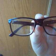 Glassses / Eyeglasses, as reported by Holland Ridge Farms using iLost