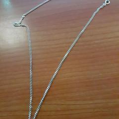 Zilveren kettinkje met hangertje (dier), zoals gemeld door Alrijne Leiderdorp met iLost