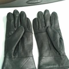 paar handschoenen, zoals gemeld door Diergaarde Blijdorp met iLost