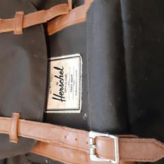 Rugzak zwart, as reported by Arriva Lelystad using iLost