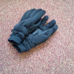 Handschoenen, as reported by Arriva West-Brabant using iLost