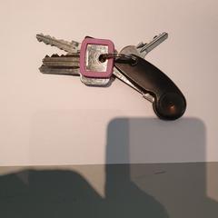 Sleutels, zgłoszono przez RAI Amsterdam przy użyciu iLost