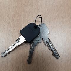 Fietssleutel + 2 losse sleutels, as reported by Arriva Vechtdallijnen using iLost