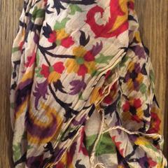 Sjaal, zoals gemeld door Van der Valk Hotel Kasteel TerWorm met iLost