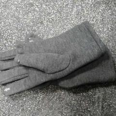 Grijze handschoenen, zoals gemeld door Connexxion Hoekse Waard / Goeree Overflakkee met iLost