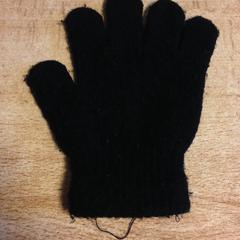 Kleine handschoen, as reported by Dolfinarium using iLost