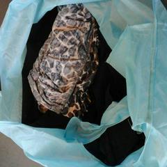 Tas met kleding, conforme relatado por Connexxion Gooi en Vechtstreek usando o iLost