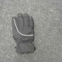 Handschoen, zoals gemeld door SnowWorld, Landgraaf met iLost