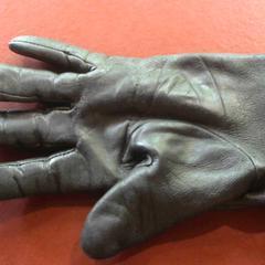 Handschoen, gemeldet von Apenheul über iLost