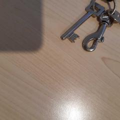 Sleutels, zoals gemeld door Gemeente Wijk bij Duurstede met iLost