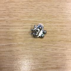 Oorbelletje zilver, zoals gemeld door Canisius-Wilhelmina Ziekenhuis met iLost