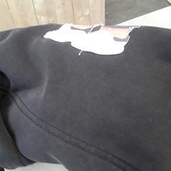 Sweatshirt zwart, as reported by Arriva Friesland / Groningen using iLost
