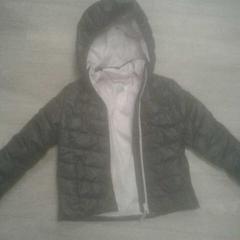 Kinderjas, zoals gemeld door Diergaarde Blijdorp met iLost