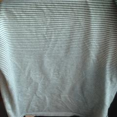 T shirt, as reported by Van der Valk Hotel Veenendaal using iLost