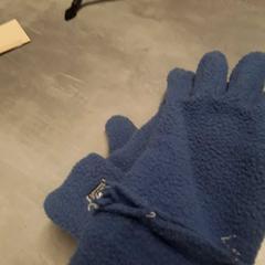 Handschoenen blauw, as reported by Arriva Friesland / Groningen using iLost