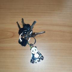 sleutels met pandabeer als hanger, zoals gemeld door Connexxion Overijssel / Flevoland-IJsselmond met iLost