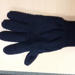 Handschoen blauw rechterzijde, as reported by Arriva Vechtdallijnen using iLost