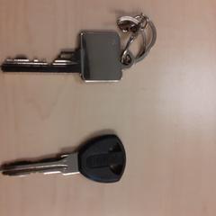 2 sleutels, zoals gemeld door Alrijne Leiderdorp met iLost
