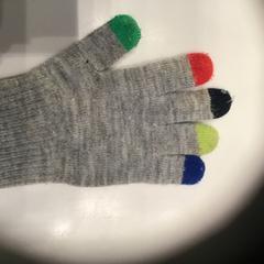 Handschoen/glove, as reported by Rijksmuseum using iLost