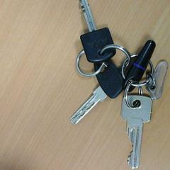 Bos sleutels, zoals gemeld door Connexxion Hoekse Waard / Goeree Overflakkee met iLost