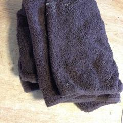 Handdoek, zoals gemeld door Dolfinarium met iLost