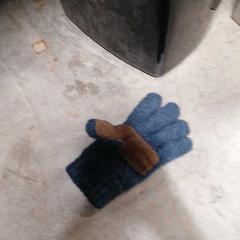Handschoen, as reported by Arriva Achterhoek-Rivierenland using iLost