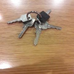 sleutels, as reported by St. Antonius Ziekenhuis locatie Nieuwegein using iLost