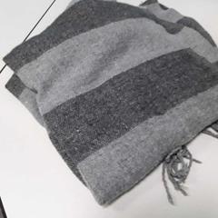Sjaal, as reported by Arriva Vechtdallijnen using iLost