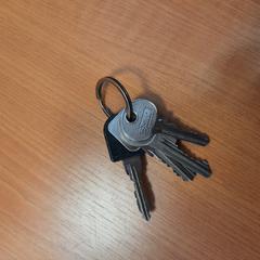 sleutels, gisa salatu by Syntus Twente iLost erabiliz