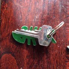 Sleutel met groene sleutelhanger