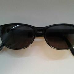 Zonnebril, zoals gemeld door Diergaarde Blijdorp met iLost