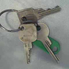 sleutelbos, zoals gemeld door Walibi Holland met iLost