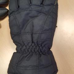 Handschoenen, as reported by Arriva Vechtdallijnen using iLost