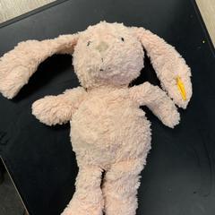 Roze konijntje, gemeldet von Van der Valk Hotel Heerlen über iLost