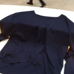Blauwe trui / blue sweater, as reported by Rijksmuseum using iLost