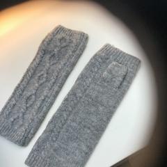 Handschoenen, segundo informou Rijksmuseum usando iLost