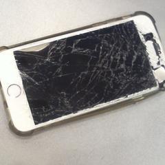 IPhone, come riportato da Walibi Holland utilizzando iLost