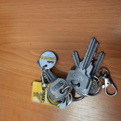 sleutels, gemeldet von Keolis Blauwnet Enschede über iLost