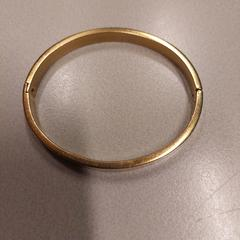 Armband, som rapportert av Gemeente Hilversum ved bruk av iLost