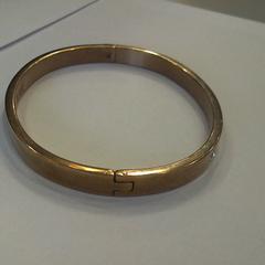 armband がiLostで Walibi Holland によって報告されました