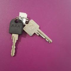 2 sleutels, zoals gemeld door Gemeente Oost Gelre met iLost