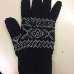 Handschoen, zoals gemeld door Pathé Schouwburgplein met iLost
