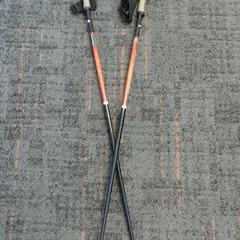 Nordic walking stok, come riportato da Connexxion Zaanstad utilizzando iLost